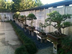 huntington garden's japanese gardens